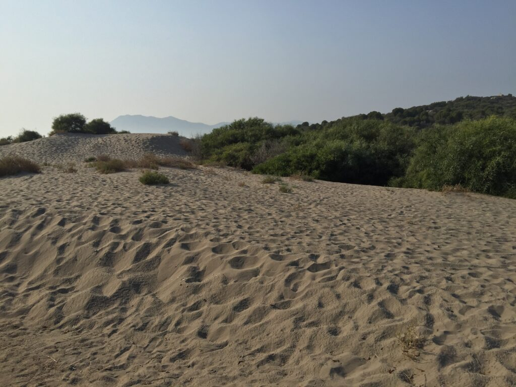 Patara Plajı'nda çöllerdeki gibi kum tepeleri de bulunur...